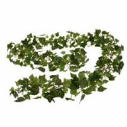 English Ivy Chain Garland (6ft)