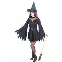 Witch Sexy Costume LARGE