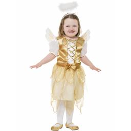 Angel Fairy Dress Wings And Halo Age 7-9