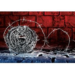 30M Roll Of Barbed Wire