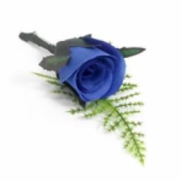 Romance Bridal Button Hole Corsage Blue 10pcs