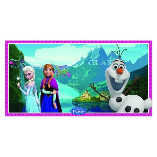 Frozen Scene Setter 150 x 77cm