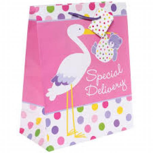 Baby Girl Gift Bag Large