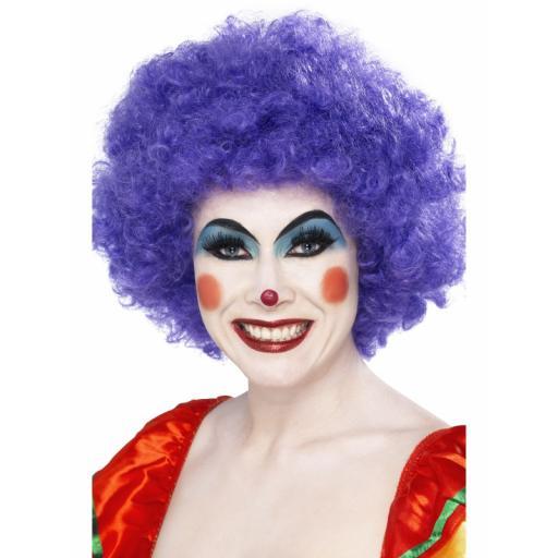 Crazy Clown Wig Purple