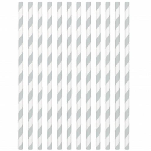 Silver Paper Drinking Straws 19cm 24pcs