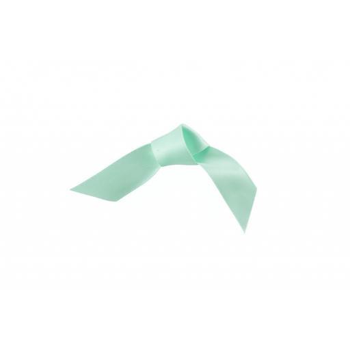 15MM Woven Edge Ribbon Eau De Nil Green