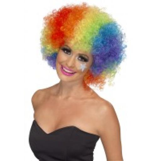 Rainbow Funky Afro / Crazy Clown Wig