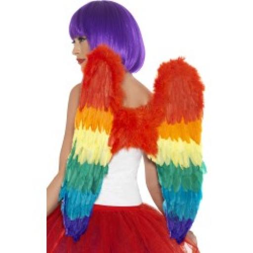 Rainbow Feather Wings 60x60cm