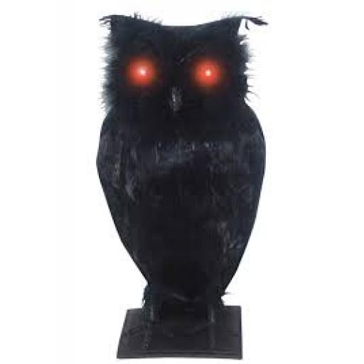 Owl Black with Sound And Light