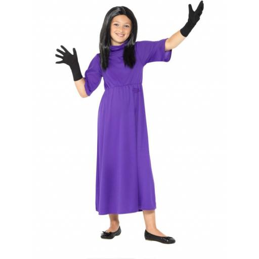 Roald Dahl Deluxe The Witches Purple, with Dress, Wig & Gloves MEDIUM