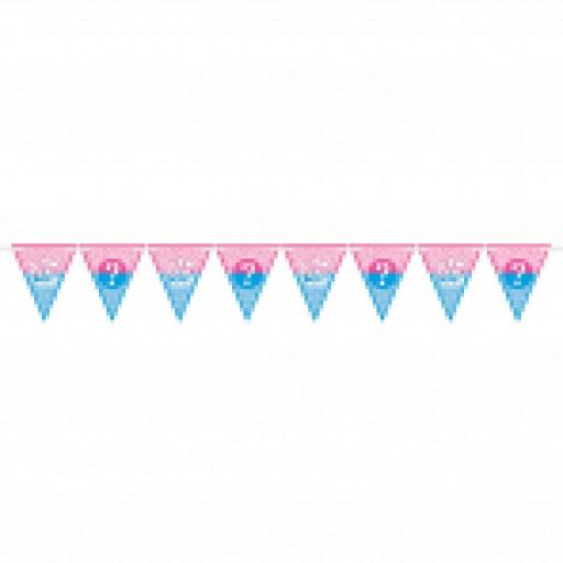 Girl or Boy Baby Shower Pennant Banner 4.5m