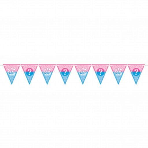 Girl or Boy Baby Shower Pennant Banner 4.5m