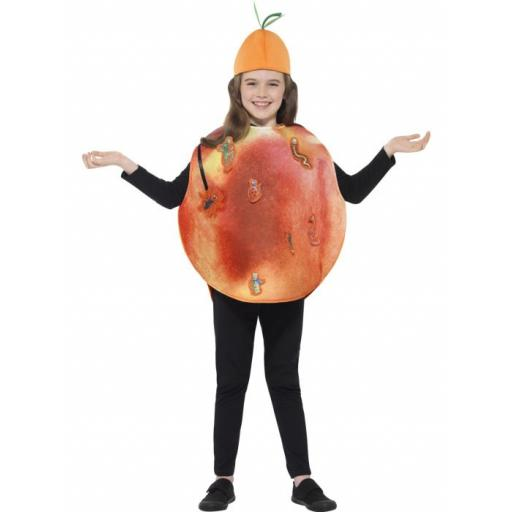Roald Dahl James & The Giant Peach Costume, Orange, with Tabard & Hat