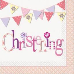Pink Bunting Christening Luncheon Napkins 16ct 2ply