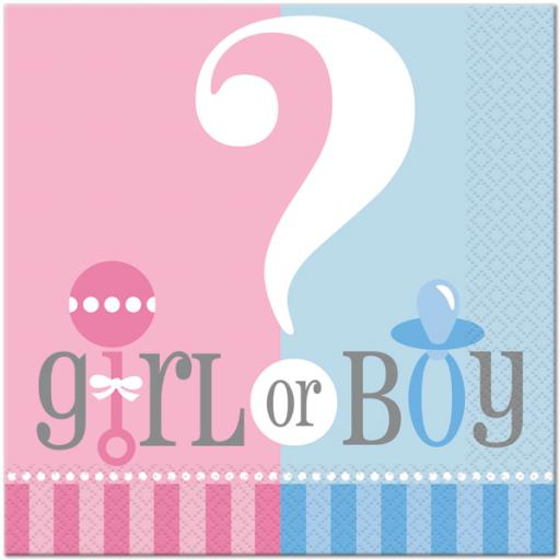 Gender Reveal Baby Shower Luncheon Napkins 20ct 2ply
