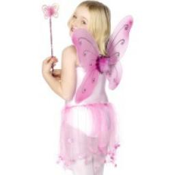 Pink Butterfly Wings & Wand 38x42cm