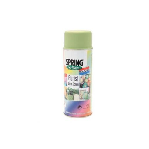 Lemon Lime Florist Deco Aerosol Spray 400ml