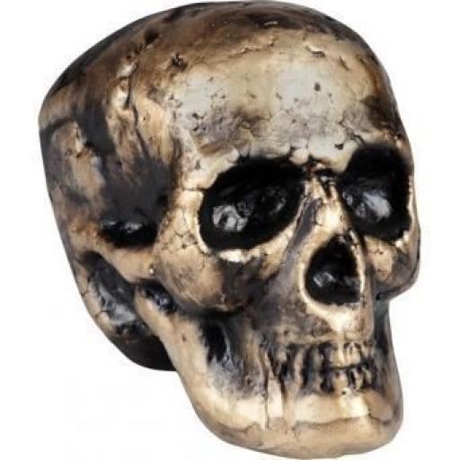 Skull Goldberg 17x16cm