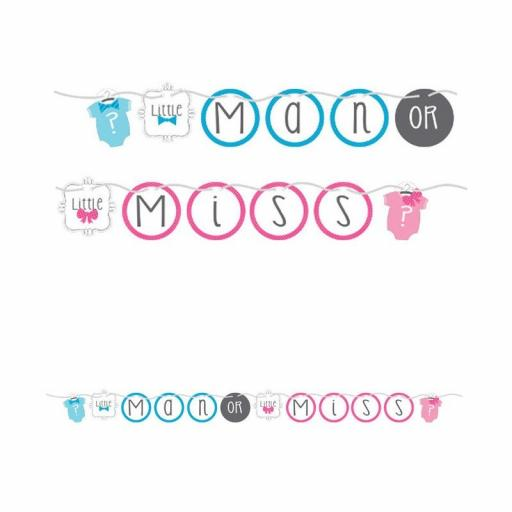 Little Man or Little Miss Shaped Paper Baby Shower Banner 1.52m