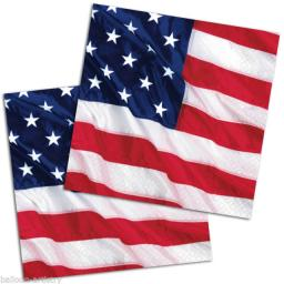 USA Flying Colours Luncheon Napkins 16pcs 2ply