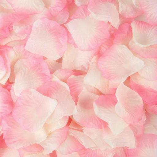 1000 Blush Rose Petals
