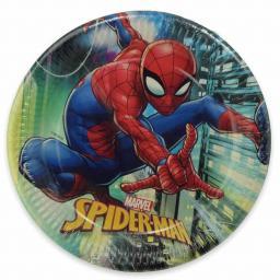 Spider Man Paper Plates.jpg