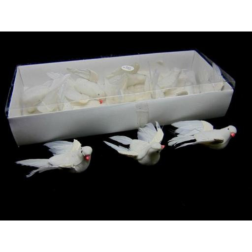 12 small white doves.jpg