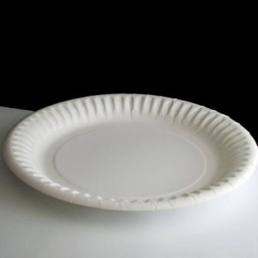 100 White Paper Plate 9 Inch