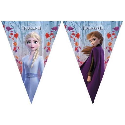 Flag Banner - Frozen II